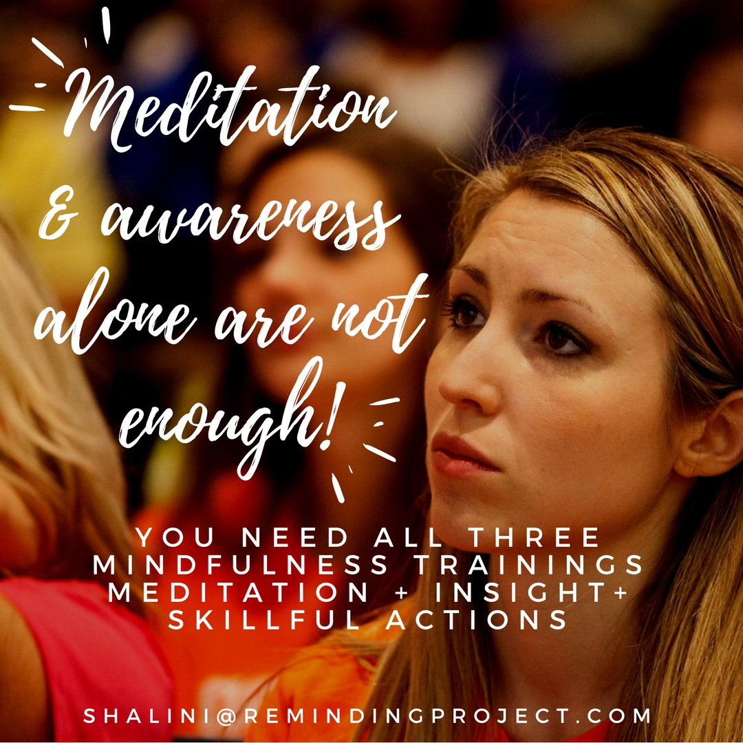 Why Meditation And Awareness Alone Are Not Enough: Three Mindfulness Trainings For Real Change