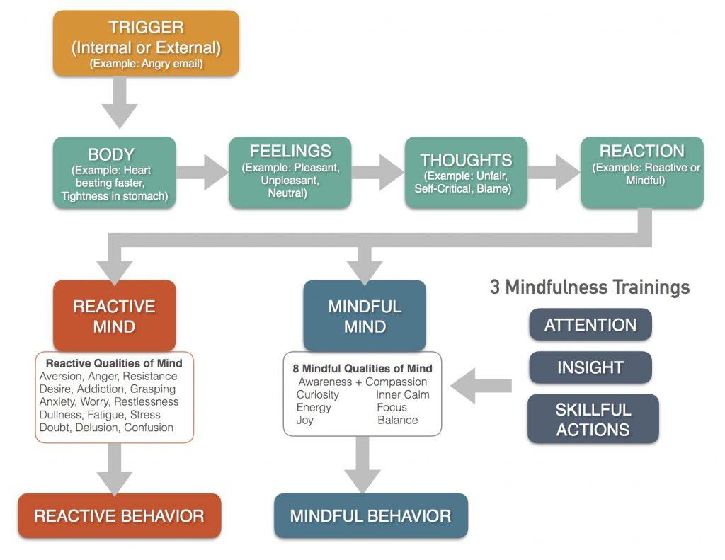 transformative process 3 trainings